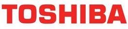 Assistenza condizionatori Toshiba a Torino